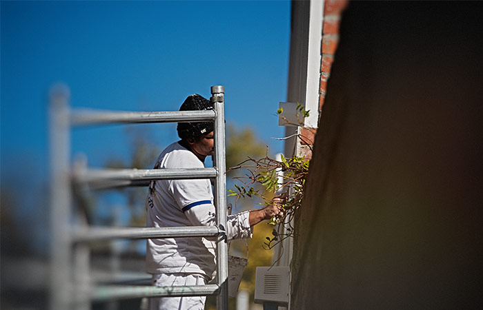south-yarra-painting-home-services-working-04